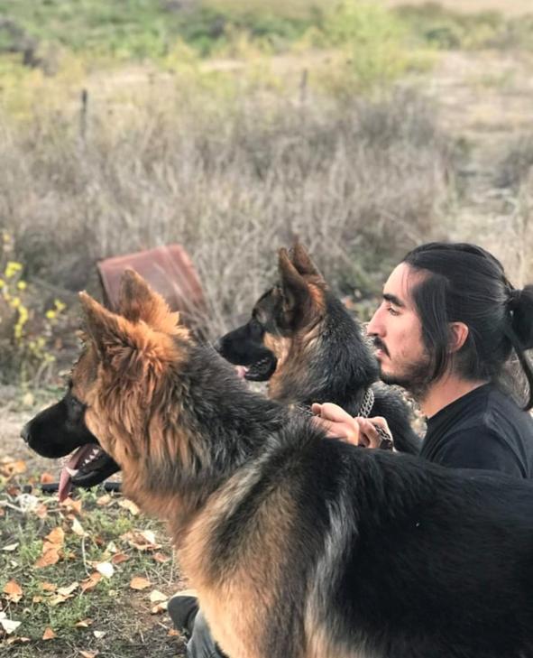Abraham & dogs